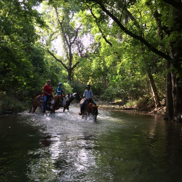 group trail ride in the river of San Marcos Texas