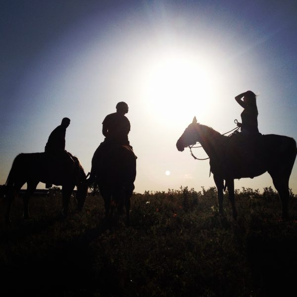 Call to make a reservation and take a horseback riding session of a lifetime!