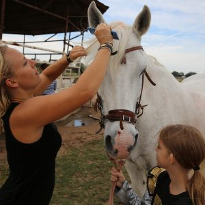 Horse trainer, MacCoy, wearing black is aided by hunter/jumper student and horse lover MaKenna to prepare charming white percheron cross, Maverick, for his roll as a unicorn