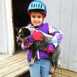 youth horseback rider poses with puppy, sporting blue horseback riding helmet and dressed for the cold at a winter day camp program