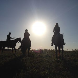 Three horseback riding students silhouetted in the setting sun of a north Austin dude ranch in Summer 2016