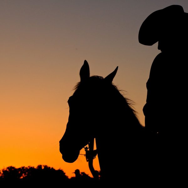Orange sky blazes like the sun during the final hours of the day at Dude ranch in San Antonio, with cowboy pictured in silhouette on his trusted steed