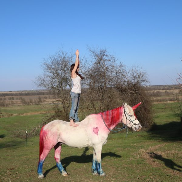 overnight horse camper Anabelle poses on Maverick in a standing position, while he sports a unicorn look with a red mane and blue feathers