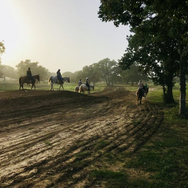 professional motocross dirt bike track provides excellent horseback riding opportunities