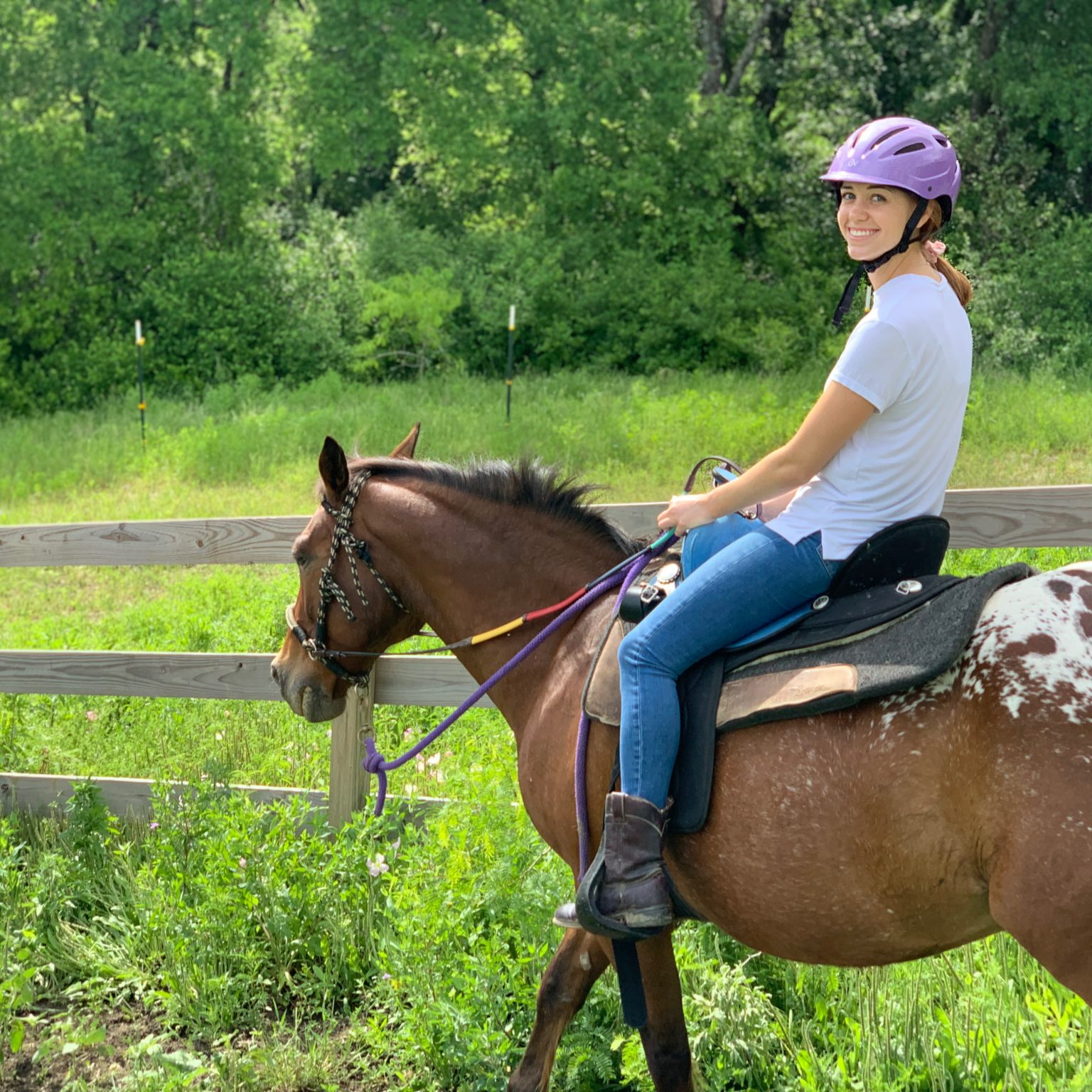 Trail Rides – Maverick Horseback Riding